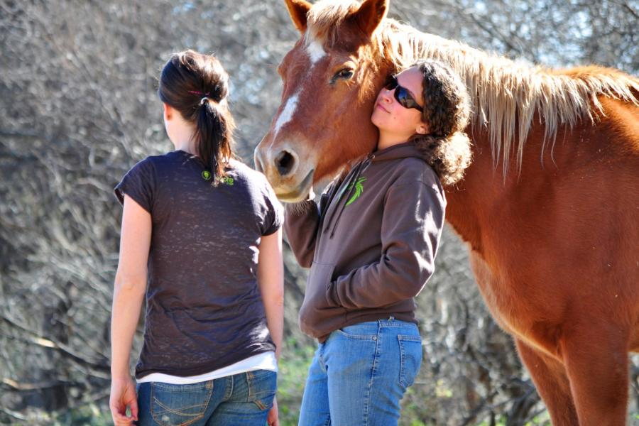 Prescott College Equine Assisted Mental Health